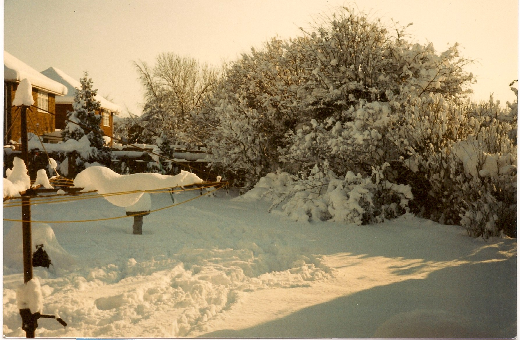 Snow in the garden of 27 Wigmore Road in 1987